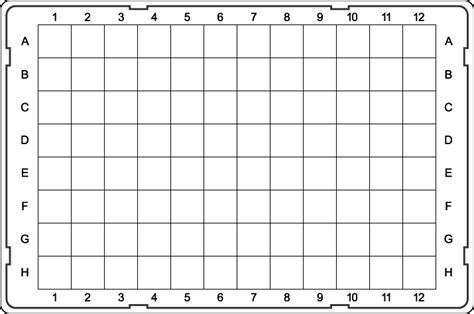 well template 96 well plate template tryprodermagenix org