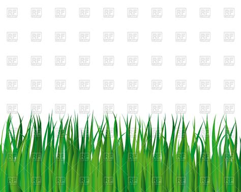 green grass clipart background with green grass vector clipart image 82111
