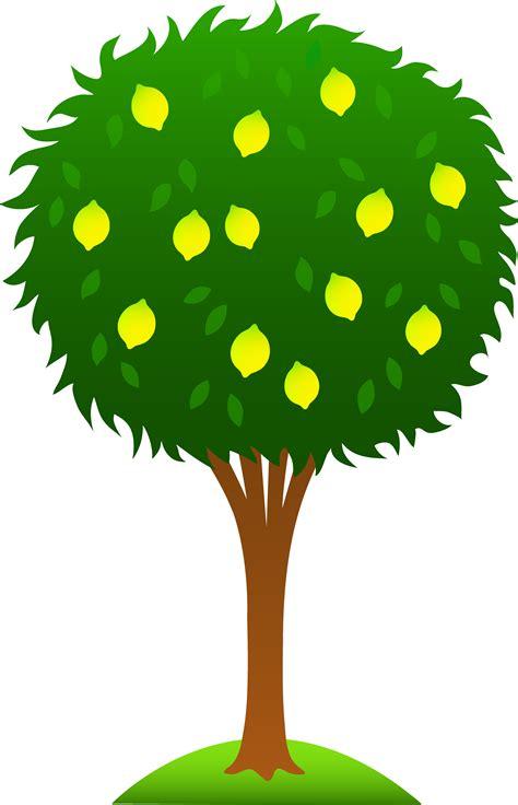 tree clipart fruit tree clipart 101 clip