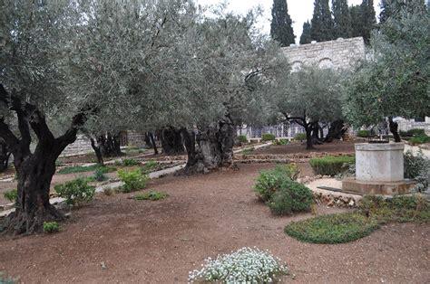 In Garden Of Heroes Heroines And History Gethsemane Garden Of Suffering
