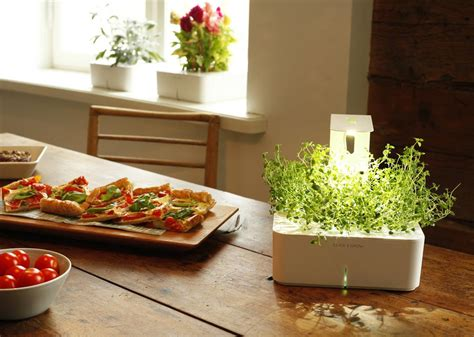 click and grow garden click grow s new grow light enables smart flower pots to