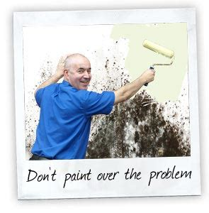 paint over mold in bathroom ventilation condensation mould asthma allergies vocs