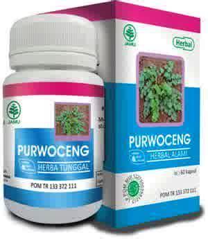 Original Purwoceng Hiu Obat Herbal Penambah Stamina Pria kapsul ekstrak purwoceng hiu herbal stamina pria