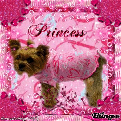 puppy princess pink princess puppy alwaysanangel69 169 174 picture 113090477 blingee