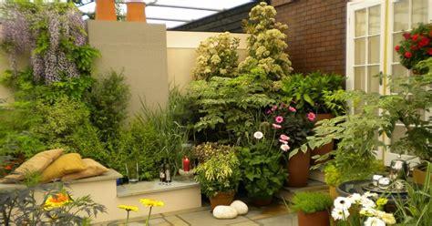 tanaman hias  taman rumah minimalis