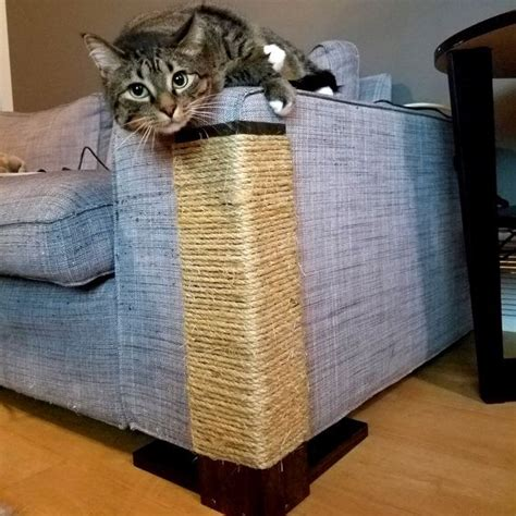 cat scratching couch 25 best ideas about cat scratching post on pinterest