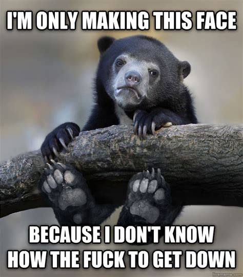 Truth Bear Meme - livememe com dangling confession bear