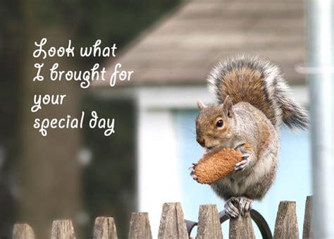 Squirrel Birthday Card Happy Birthday Card Squirrel Birthday Greeting By Belvidesigns