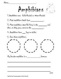 Hibians Worksheet by Hibians Worksheet Free Worksheets Library
