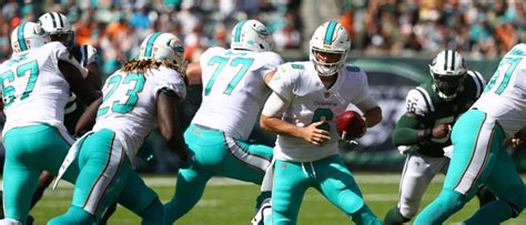 miami dolphins coach coke miami dolphins coach ripping lines of white powder is not