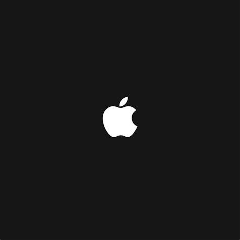 apple wallpaper ipad retina apple logo ipad ipad 2 wallpapers beautiful ipad