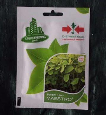 Penjual Benih Bayam Merah jual benih bayam hijau maestro 10 000 biji panah merah