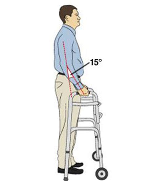 proper picture height how to use a walker safely and comfortably dailycaring