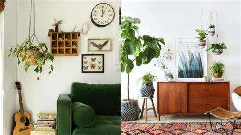 plantas de interior para salon decorablog revista de decoraci 243 n