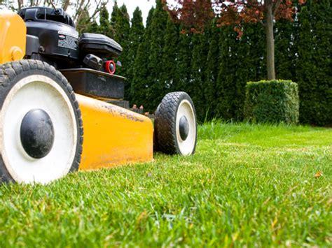 Welcher Rasensamen Ist Der Beste 2244 by Rasenpflege Ratgeber Rasen Pflege Rasenm 228 Gartenpflege