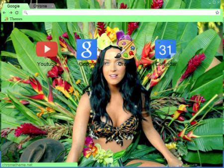 google themes katy perry 12 best images about celebrity browser themes on pinterest