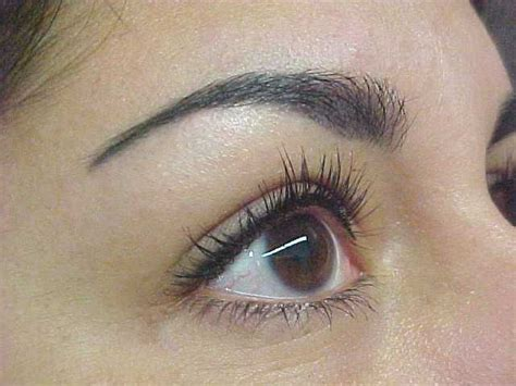 what is permanent makeup msbeautyinfo s blog