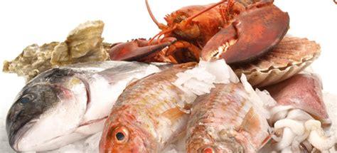 pesce alimentazione l importanza pesce nell alimentazione cucinarepesce