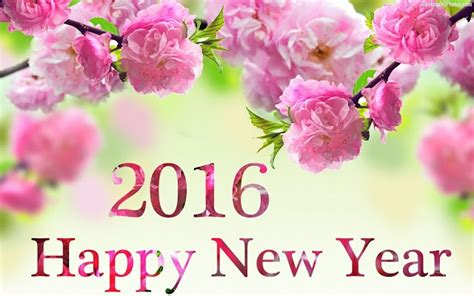 new year cotton flower happy new year 2016 wishes quotes to all supportmeindia s