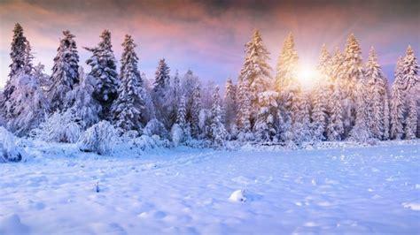 Imagenes Hd Nieve   paisaje de invierno la nieve fondos de pantalla hd