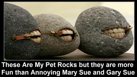 Pet Rock Meme - pet rock meme 28 images rmx pet rock by voldamort meme