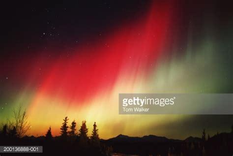 denali national park northern lights alaska northern lights over denali national park stock