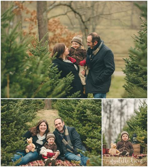 pittsburgh christmas tree farm family photos nutbrown s