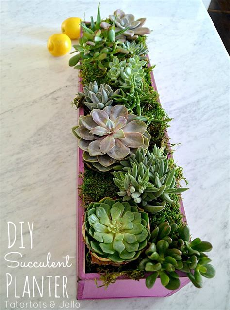 diy wooden succulent planter planters simple