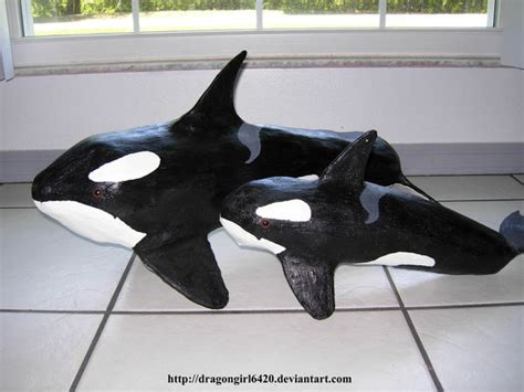 How To Make A Paper Mache Whale - killer whales by dragongirl6420 on deviantart