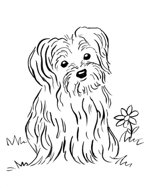 yorkie coloring pages color a puppy coloring book puppy coloring page samantha bell