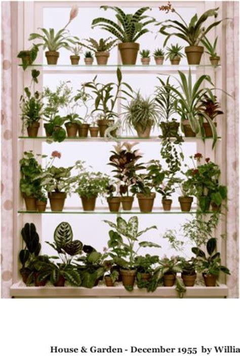 Best Window Plants 25 Best Ideas About Window Shelves On Kitchen