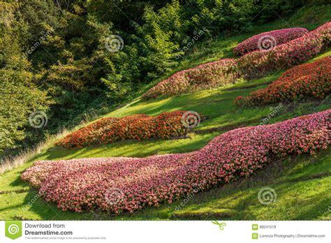 giardini botanici merano i giardini botanici di trauttmansdorff