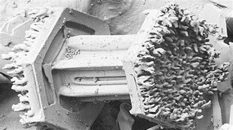 imagenes sorprendentes captadas sorprendentes im 225 genes de la nieve captadas con un