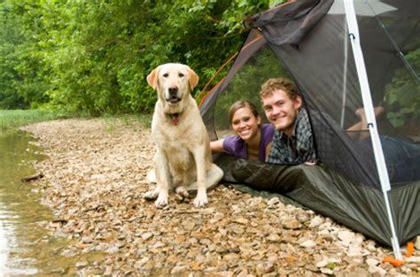 Dog friendly holidays, caravans and camping   Pitchup.com