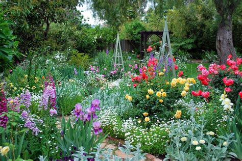 What Flowers Should I Plant In My Garden How To Plant What Flowers Should I Plant In My Garden