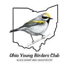 bsbo bird bander s blog may 2009