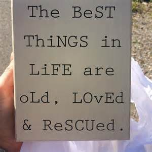 quote about antiquing thrifting flea market finds - Upcycling Quotes