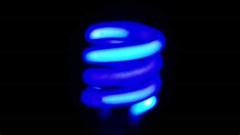 unfiltered black light fluorescent bulbs fluorescent lights charming fluorescent light