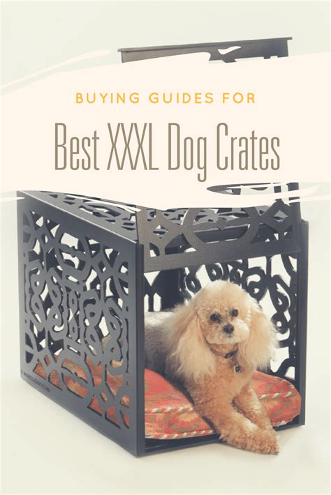 best crates for puppies buying guides for best xxxl crates