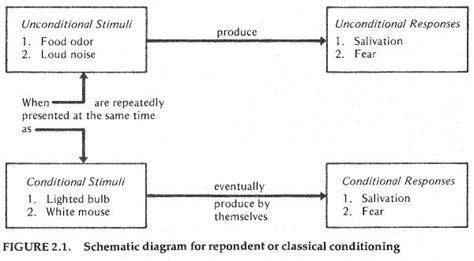 classical conditioning diagram classical conditioning diagram pleng s portfolio