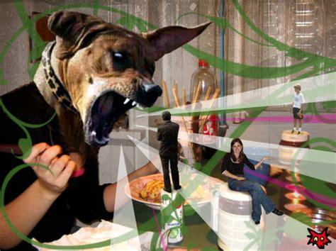 can dogs eat pancakes pancake by giesji on deviantart