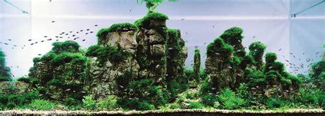 aquarium design criteria the top 25 ranked freshwater aquariums in the world