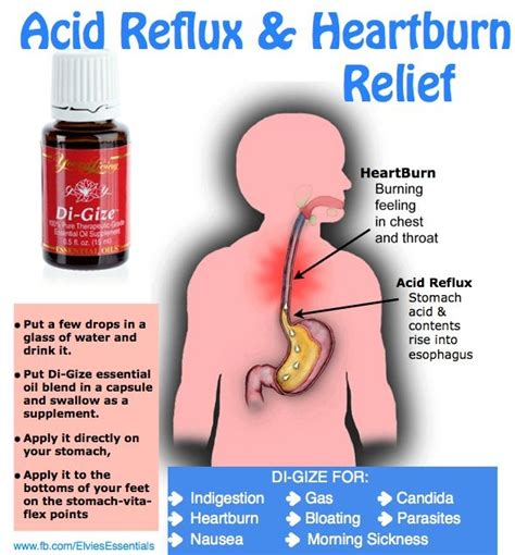 3 simple steps to eliminate heartburn and acid reflux young living di gize essential oil acid reflux heartburn
