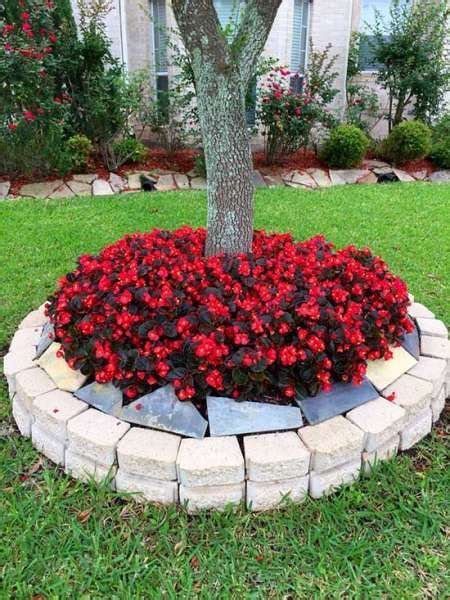 beautiful flower beds  trees landscaping