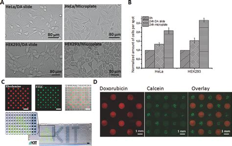 Adv Mat Res by Levkin Research 50 Journals 2015