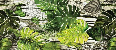 The Planthunter ? Plant Profile: Monstera deliciosa