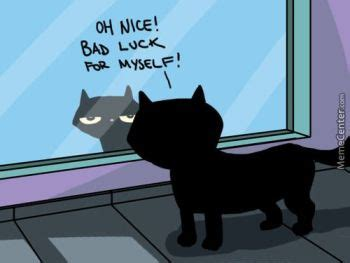 Black Cat Meme - if india could be defined in one line these would be it