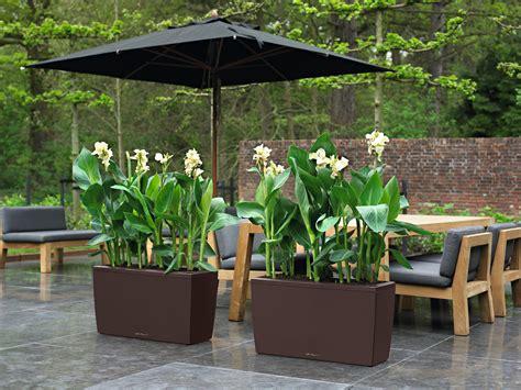 lechuza cararo lechuza cararo self watering planter metropolitan
