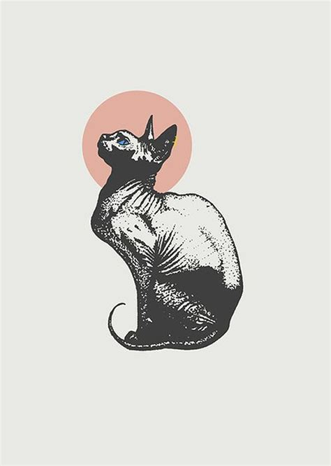 wallpaper cat tattoo zeke tucker sphynx ilustraci 211 n pinterest sphynx and