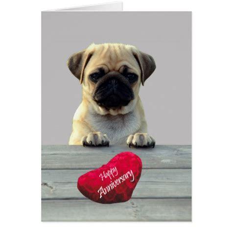 pug anniversary card pug wishing happy anniversary greeting card zazzle